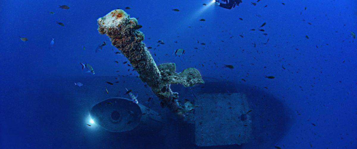 Diving, i migliori siti per immersioni